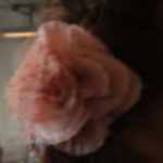 Profile picture of Tenebrae