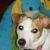 Profile picture of jadenlea